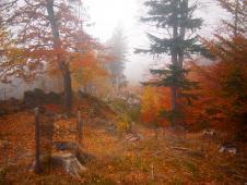 podzimní Vysočina